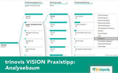 trinovis VISION Praxistipp: Analysebaum
